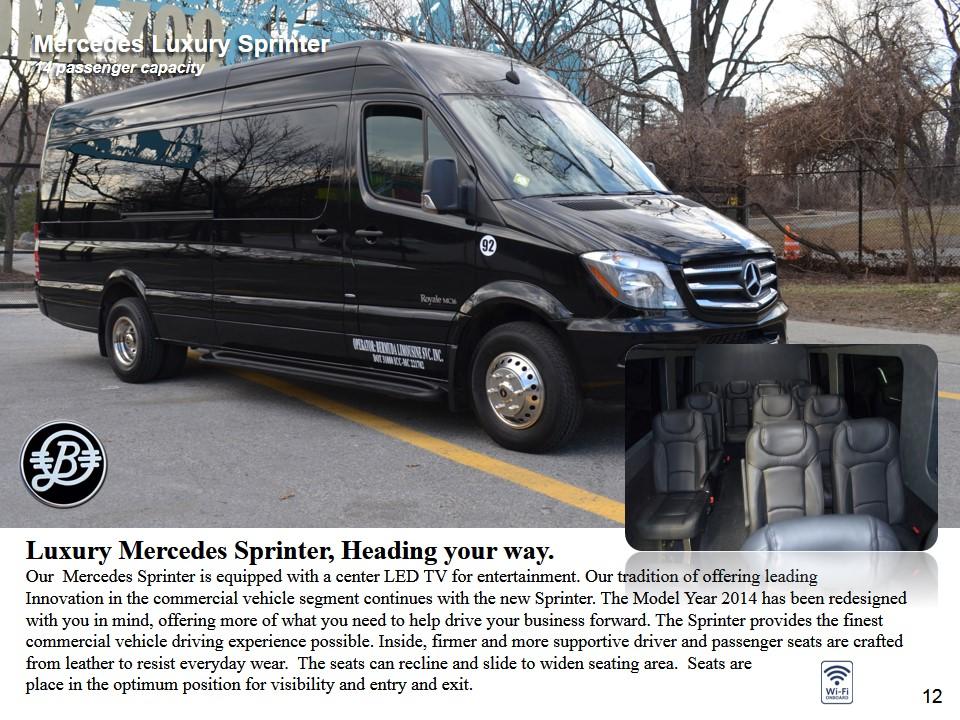 Luxury Vans - Mercedes Sprinter 14 passenger