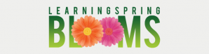 LearningSpring Blooms Benefit at the Ritz Carlton Hotel