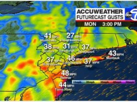 Nor'easter brings strong winds, torrential rain